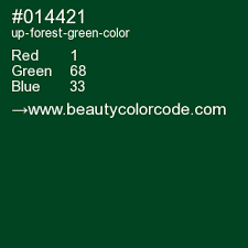 forest green color code up forest green 014421 hex color code deep green cyan deep spring green