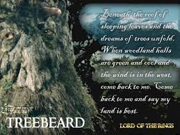 lord of the rings images treebeard hd wallpaper and background