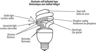 types of compact fluorescent light bulbs compact fluorescent l shapes norburn lighting vancouver s