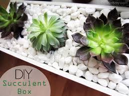 100 succulent planter box diy pallet wood succulent