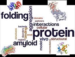 100 pdf methods in modern biophysics 3rd edition philosophy