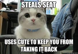 Cute Cat Meme Generator - livememe com selfish seat thief cat