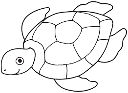turtle clipart printable pencil and in color turtle clipart