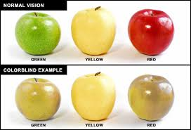 Is Color Blindness A Disability Colour Kindness