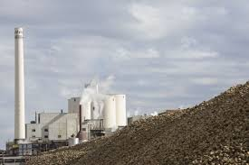 idaho press tribune community news idahopress com last year u0027s rough winter means lower sugar yield for sugar beet