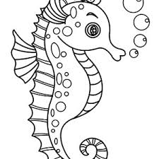 outline drawing seahorse coloring kids play color