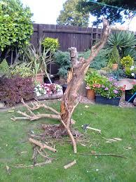 reclaimed wood bird feeder gardening forum gardenersworld com