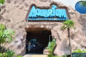 thanksgiving buffet bay area aquarium restaurant kemah tx bay area houston restaurants