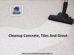 Bathroom Tile Steam Cleaner - the 25 best grout steam cleaner ideas on pinterest grout