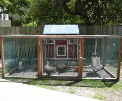urban farming raising backyard chickens 3 steps with pictures