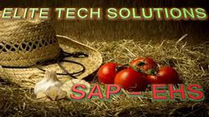 Sap Mdm Jobs In Usa Sap Ehsm Environment Health Safety And Management Online