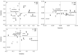functional diversity and functional traits of periphytic algae
