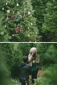 jordanlakechristmastreefarm jordan lake christmas tree farm morgan