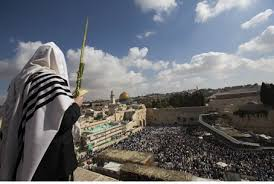 prayers for sukkot praying in jerusalem thousands pray at kotel on last day