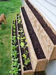 Urban Herb Garden Ideas - the 25 best urban gardening ideas on pinterest growing