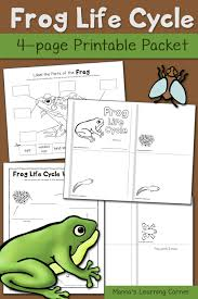 frog life cycle worksheets mamas learning corner