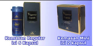 distributor vig power makassar hub 0853 9646 1970