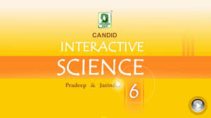 100 lab manual in science 6 class get 20 science classroom