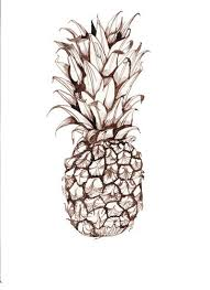 10 best images about pineapple sketch on pinterest pineapple