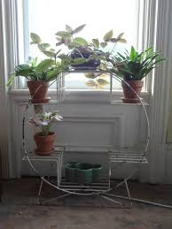 magical plant stands plant plant stands