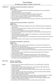 sle resume for client service associate ubs description meaning business development associate resume sles velvet jobs