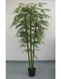 best artificial bamboo tree plant shop in india