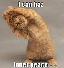 Yoga Meme - i can haz inner peace cat yoga memes and comics