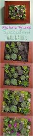wall garden indoor best 25 wall gardens ideas on pinterest vertical gardens