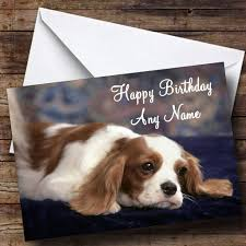 king charles spaniel personalised birthday card the card zoo