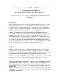 Argumentative Essay Samples For College Position Essay Sample Letter To Get Business