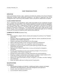 Resume Title Sample by Cio Resume Examples Free Resume Example And Writing Download