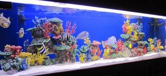 Instant Reef R043S Artificial Coral Reef Aquarium Decor for