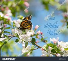 Monarch Design by Monarch Butterfly Feeding On Nectar Apple Stock Photo 103715516