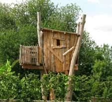 building your own tree house how to build a house building a tree house safety height from the ground for treehouses