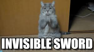 Invisible Cat Memes - invisible sword what the fuck are you doing cat meme on memegen