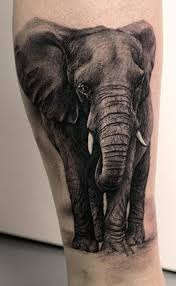 40 elephant tattoos on sleeve