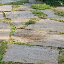 Stone Patio Diy by Best 25 Stone Patios Ideas Only On Pinterest Stone Patio