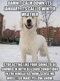 Funny Cold Weather Memes - the 50 funniest winter memes of all time gallery worldwideinterweb