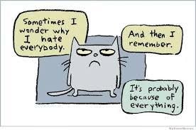 I Hate Everyone Meme - sometimes i wonder why i hate everybody weknowmemes
