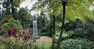 Cairns Botanical Garden by Atherton Tablelands Cairns Highlands Discover The Atherton