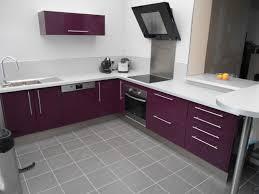 meuble de cuisine aubergine cuisine aubergine photo 1 3 cuisine équipée de couleur