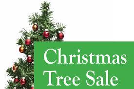 christmas tree sale focm christmas tree sale carey edm