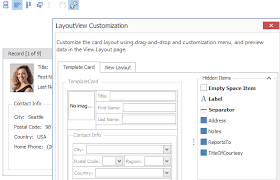 xtragrid layout view getting started with data grid and views data grid winforms