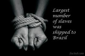 slavery facts 115 unknown facts about slavery