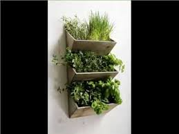 plant wall hangers indoor beautiful house plants picture gallery for your office home or