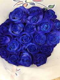 blue roses delivery blue roses these are dyed flowers sold in bunches of 20 stems