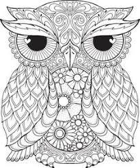 owl coloring pages kids u2026 pinteres u2026