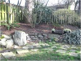 alternatives to grass in backyard lawn replacement backyard ideas no grass alternatives to in lawn