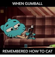 Gumball Memes - when gumball remembered how to cat meme on me me