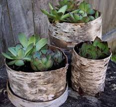 cheap upcycled flower pots from plastic nursery pots outside